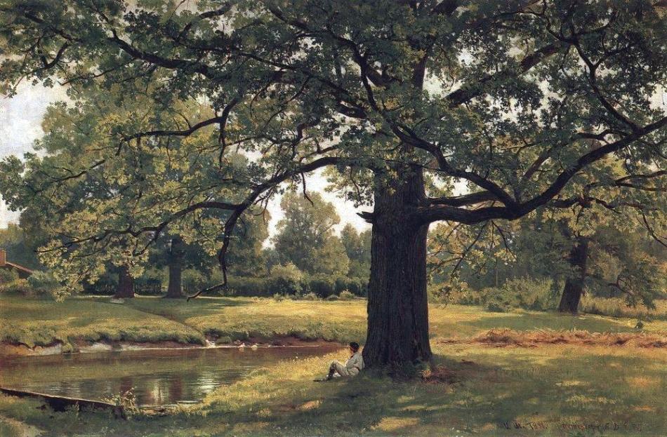 oaks-in-old-peterhof-1891-1