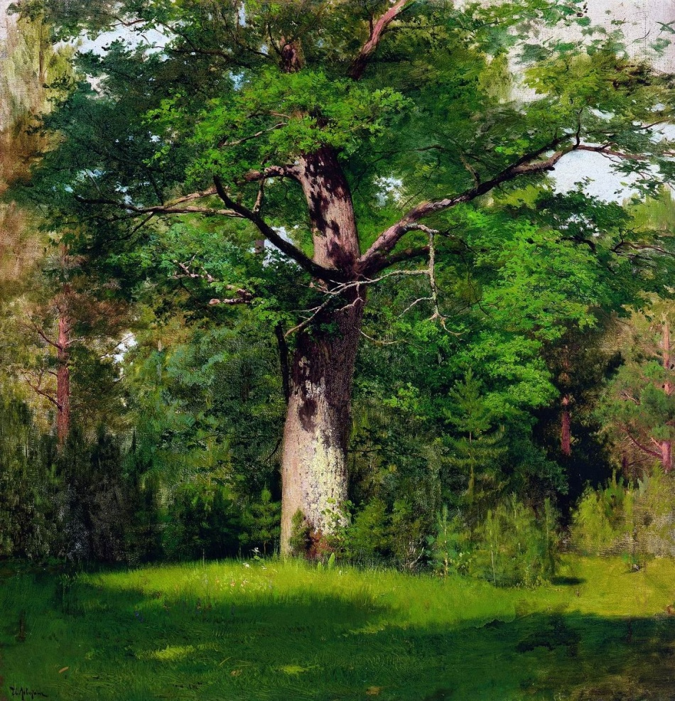 Isaak Levitan – The Tretyakov Gallery 4983. Title: Дуб/Oak. Date: 1880. Materials: oil on canvas. Dimensions: 57 x 57 cm. Nr.: 4983. Source: http://vsdn.ru/images/data/mus/70035_big_1347358240.jpg.