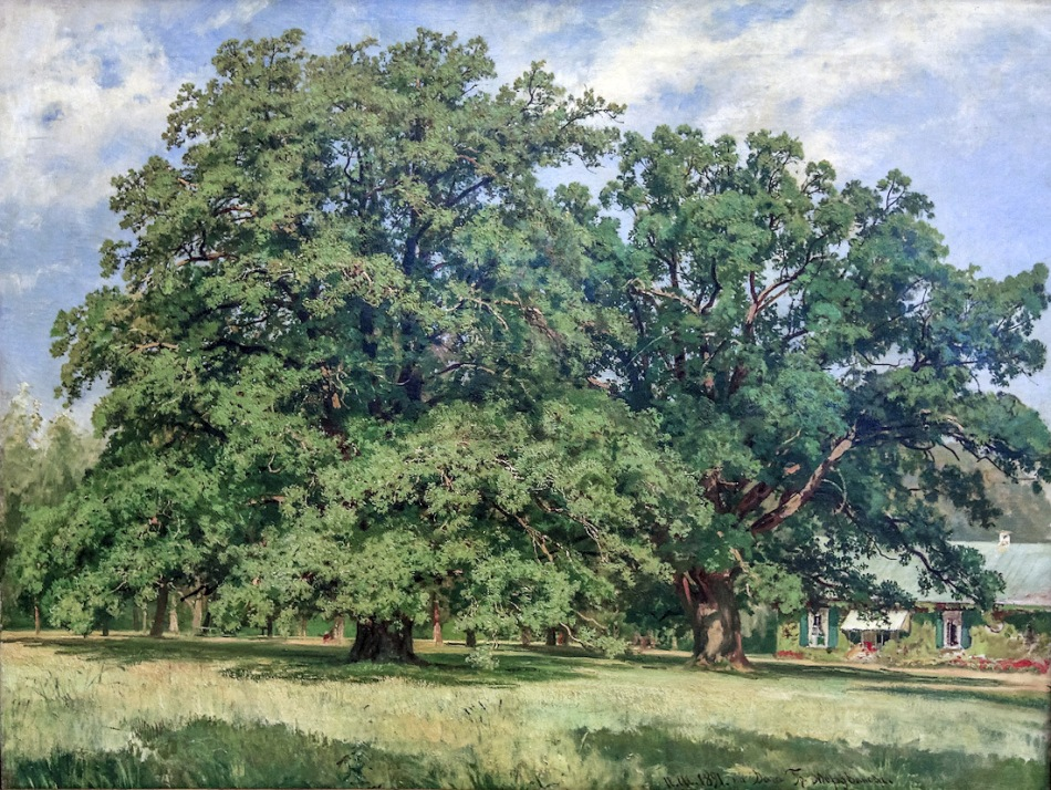 Ivan Shishkin – The State Russian Museum. Title: Мордвиновские дубы/The Mordvinovo Oaks. Date: 1891. Materials: oil on canvas. Dimensions: 84 x 111 cm. Source: http://img-fotki.yandex.ru/get/9263/84064482.56/0_851d1_3887f87f_XXXL.jpg. I have changed the contrast of the original photo.